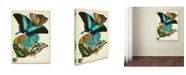 """Trademark Global Vintage Apple Collection 'Papillons 13' Canvas Art - 32"""" x 24"""" x 2"""""""