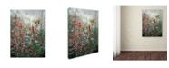 """Trademark Global Wanda Mumm 'Crown Jewels' Canvas Art - 32"""" x 24"""" x 2"""""""