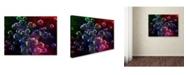 """Trademark Global MusicDreamerArt 'Hot Bubbles' Canvas Art - 32"""" x 24"""" x 2"""""""