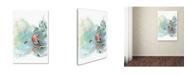 "Trademark Global The Tangled Peacock 'Robin's Winter' Canvas Art - 19"" x 12"" x 2"""