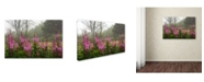 "Trademark Global Mike Jones Photo 'Campobello Lupine' Canvas Art - 47"" x 30"" x 2"""