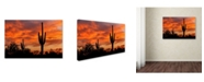 "Trademark Global Mike Jones Photo 'Saguaros Amazing Sunset 5' Canvas Art - 19"" x 12"" x 2"""