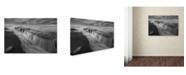 "Trademark Global Moises Levy 'Cortina de Agua BW' Canvas Art - 24"" x 16"" x 2"""