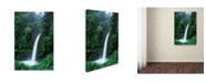 "Trademark Global Robert Harding Picture Library 'Waterfalls 1' Canvas Art - 24"" x 16"" x 2"""