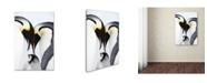 "Trademark Global Robert Harding Picture Library 'Baby Penguin' Canvas Art - 32"" x 22"" x 2"""