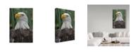 "Trademark Global Robert Michaud 'Eagle' Canvas Art - 24"" x 16"" x 2"""