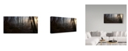 "Trademark Innovations Norbert Maier 'Winters Slight Return' Canvas Art - 24"" x 2"" x 12"""