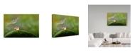 "Trademark Global Sophie Pan 'My Umberlla' Canvas Art - 19"" x 2"" x 12"""