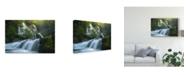 """Trademark Global Steve Schwindt 'Panther Creek Falls' Canvas Art - 32"""" x 2"""" x 22"""""""
