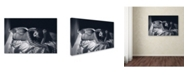 """Trademark Global Zachar Rise 'Katrin' Canvas Art - 24"""" x 16"""" x 2"""""""