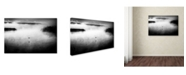 "Trademark Global Miki Meir Levi 'One Bird' Canvas Art - 32"" x 22"" x 2"""
