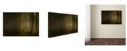 """Trademark Innovations Norbert Maier 'How Can Words Express' Canvas Art - 19"""" x 12"""" x 2"""""""