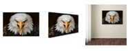 "Trademark Global Jimmy Hoffman 'Fierce' Canvas Art - 47"" x 30"" x 2"""