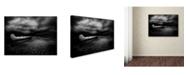 "Trademark Global David Senechal 'Calm After Drowing' Canvas Art - 47"" x 35"" x 2"""