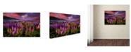 "Trademark Innovations Patrick Marson Ong 'Springtime Rush' Canvas Art - 47"" x 30"" x 2"""