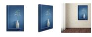 """Trademark Global Stephen Clough 'Simplicity' Canvas Art - 47"""" x 30"""" x 2"""""""