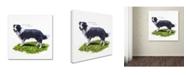 "Trademark Global The Macneil Studio 'Border Collie' Canvas Art - 14"" x 14"""