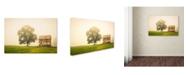 "Trademark Global PIPA Fine Art 'Abandoned House on Adams Dam Rd' Canvas Art - 16"" x 24"""