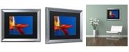 "Trademark Global PIPA Fine Art 'Fall Colors' Matted Framed Art - 16"" x 20"""