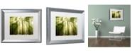 "Trademark Global PIPA Fine Art 'Sunrays Through Treetops' Matted Framed Art - 16"" x 20"""