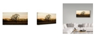 "Trademark Global Lance Kuehne 'Wine Country Winter' Canvas Art - 16"" x 32"""