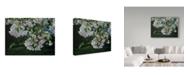 "Trademark Global Ron Parker 'Cherry Blossoms' Canvas Art - 18"" x 24"""