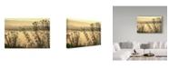 "Trademark Global Incredi 'Morning Pastels' Canvas Art - 19"" x 12"""