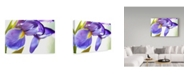"Trademark Global Incredi 'Purple Orchid' Canvas Art - 19"" x 12"""