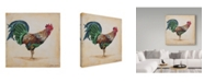 """Trademark Global Jean Plout 'Green Feather Rooster' Canvas Art - 24"""" x 24"""""""