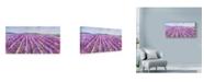 "Trademark Global Li Bo 'Lavender 5' Canvas Art - 24"" x 12"""