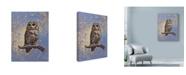 "Trademark Global Michael Jackson 'Owl Over Background' Canvas Art - 14"" x 19"""