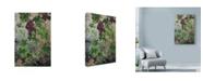 "Trademark Global Michael Jackson 'Hanging Grapes' Canvas Art - 22"" x 32"""