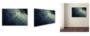 "Trademark Global PIPA Fine Art 'Rain Dropping on Canna Leaf' Canvas Art - 22"" x 32"""