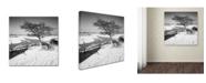 "Trademark Global Rob Cherry 'Wick' Canvas Art - 24"" x 24"""