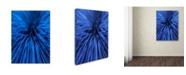 "Trademark Global Hugh Evans 'Blue' Canvas Art - 35"" x 47"""