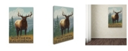 "Trademark Global Lantern Press 'Elk' Canvas Art - 30"" x 47"""
