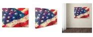 """Trademark Global Richard Wallich 'Art Flag' Canvas Art - 35"""" x 47"""""""
