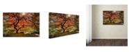 "Trademark Global Moises Levy 'The Tree Horizontal' Canvas Art - 30"" x 47"""