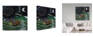 "Trademark Global Jake Hose 'Starry Night' Canvas Art - 35"" x 35"""