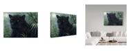 "Trademark Global Jeff Tift 'Black Beauty' Canvas Art - 35"" x 47"""