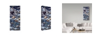 "Trademark Global Jeff Tift 'River Otter' Canvas Art - 20"" x 47"""