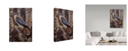 "Trademark Global Jeff Tift 'Blue Hawk' Canvas Art - 30"" x 47"""