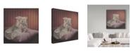 "Trademark Global Kirk Reinert 'Satin And Chinchilla' Canvas Art - 24"" x 24"""