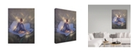 "Trademark Global Kirk Reinert 'In The Garden Of Light' Canvas Art - 35"" x 47"""