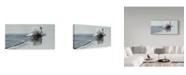 "Trademark Global Ron Parker 'Gliding Swan' Canvas Art - 24"" x 47"""