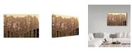 "Trademark Global Incredi 'Winter Winyard Ii' Canvas Art - 32"" x 22"""