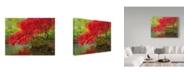 "Trademark Global Jason Matias 'Japanese Maple Over Water' Canvas Art - 32"" x 24"""