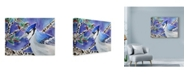 """Trademark Global Lauren Moss 'Blue Jay Way' Canvas Art - 32"""" x 24"""""""
