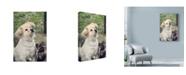 "Trademark Global Liz Zernich 'Dont Forget Me Puppies' Canvas Art - 30"" x 47"""