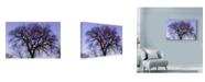 "Trademark Global Njr Photos 'Monkeying Around' Canvas Art - 24"" x 16"""